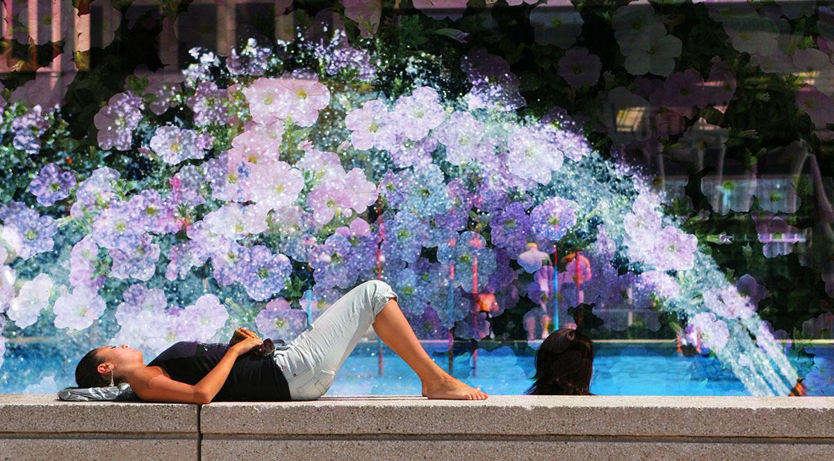 Flowers Splash - Stock Photo