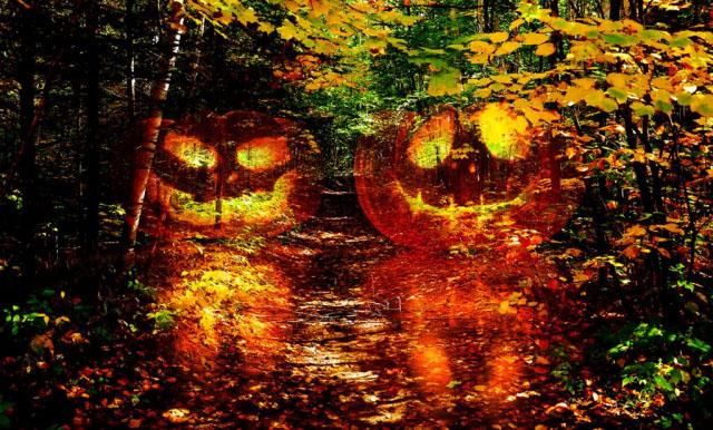 Halloween Scary Wood 1 - Stock Photo